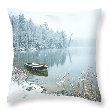 Saltmarsh Pond Throw Pillow