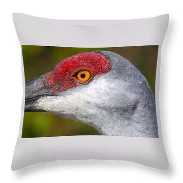 Sand Hill Crane Throw Pillow