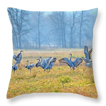 Throw Pillow featuring the photograph Saturday Night by Tony Beck