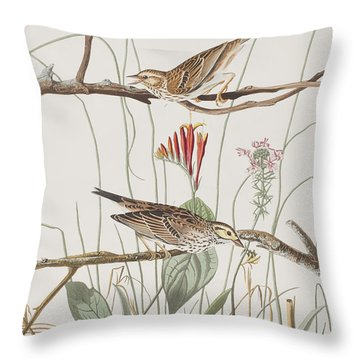 Savannah Finch Throw Pillow by John James Audubon