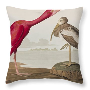 Scarlet Ibis Throw Pillow by John James Audubon