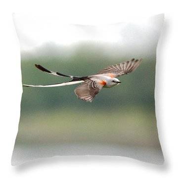 Scissor-tailed Flycatcher In Flight Throw Pillow