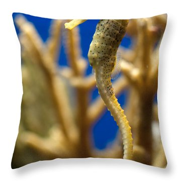 Sea Horses Throw Pillow by Carol Ailles