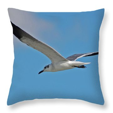 Throw Pillow featuring the photograph 1- Seagull by Joseph Keane