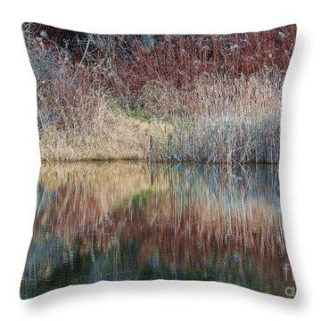 Seasons Edge Throw Pillow