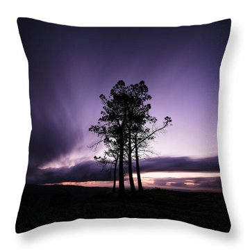 Throw Pillow featuring the photograph Sentinels by Antonio Jorge Nunes