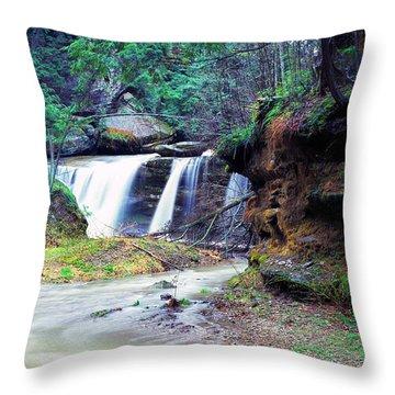 Serene Solitude Throw Pillow by Thomas R Fletcher