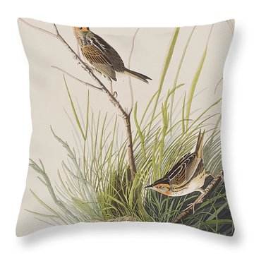 Sharp Tailed Finch Throw Pillow by John James Audubon