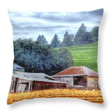 Shed And Grain Bins 17238 Throw Pillow