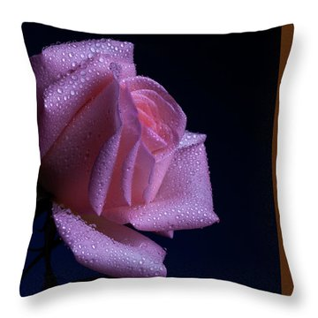 Sheen Throw Pillow