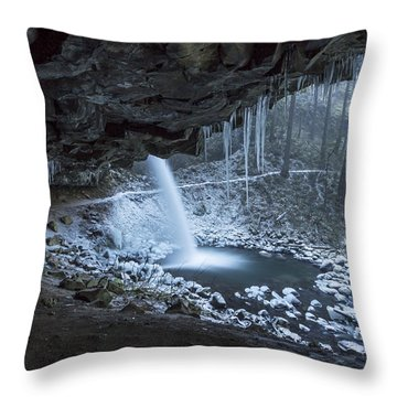 Sheltered From The Blizzard Signed Throw Pillow