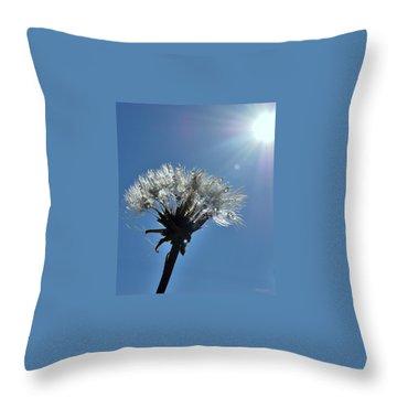Throw Pillow featuring the photograph Shining by Marija Djedovic