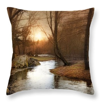 Throw Pillow featuring the photograph Silence Is Golden by Robin-Lee Vieira