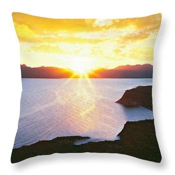 Silhouette Of Lone Cardon Cactus Plant Throw Pillow