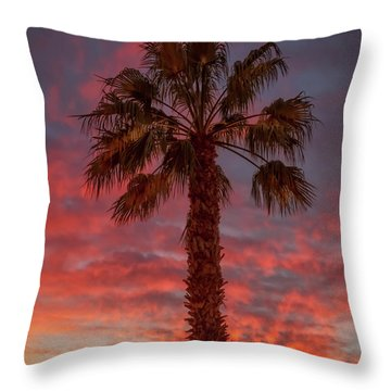 Silhouetted Palm Tree Throw Pillow by Robert Bales
