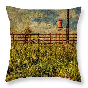 Siluria Cotton Mill Throw Pillow by Phillip Burrow