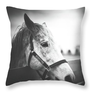 Silver Charm Throw Pillow