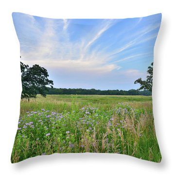 Silver Creek Conservation Area Sunset Throw Pillow