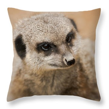 Simples Throw Pillow