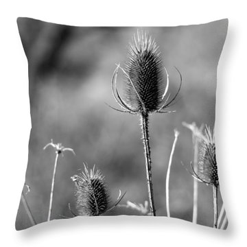 Simply Thistle Throw Pillow