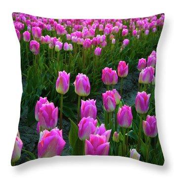 Skagit Valley Dawn Throw Pillow