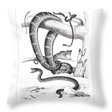 Throw Pillow featuring the drawing Snakes And Frogs Of Costa Rica by T Sinclair
