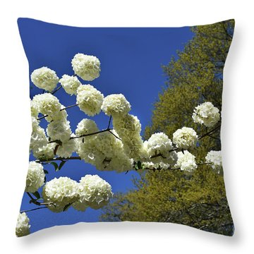 Throw Pillow featuring the photograph Snowballs by Skip Willits