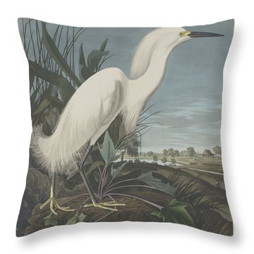 Snowy Heron Or White Egret Throw Pillow by Rob Dreyer