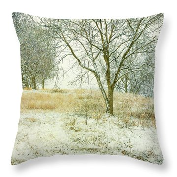 Throw Pillow featuring the digital art Snowy Winter Morning by Randy Steele
