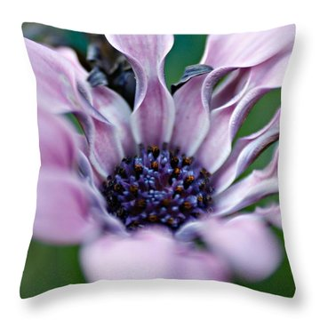 Soft Purple Throw Pillow