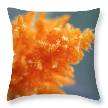 Soft Textures Throw Pillow