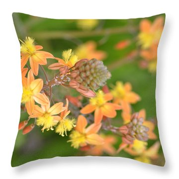 Softly Glowing 2  Throw Pillow