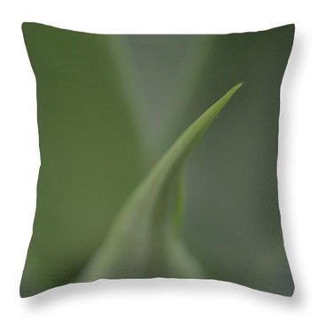 Softserve Swirl Throw Pillow by Tim Good