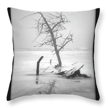 Solitude Throw Pillow by Sue Stefanowicz