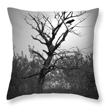 Something To Squak About. Throw Pillow