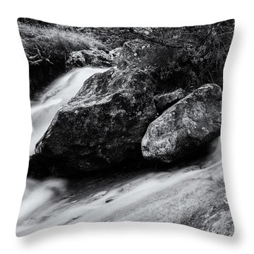 Sour Milk Gill Throw Pillow