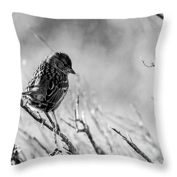 Snarky Sparrow, Black And White Throw Pillow