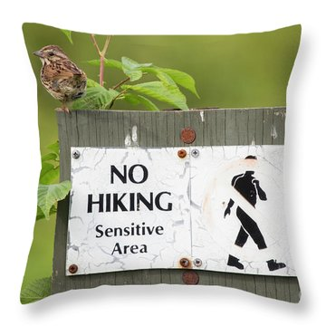 Sparrow Throw Pillow by Jeannette Hunt