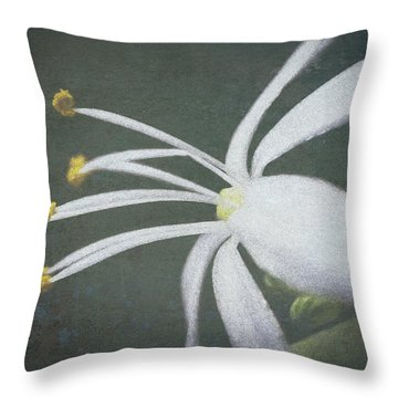 Spider Plant Flower II Throw Pillow