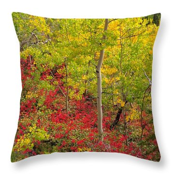 Splash Of Autumn Throw Pillow