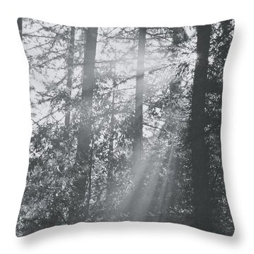 Marin County Throw Pillows