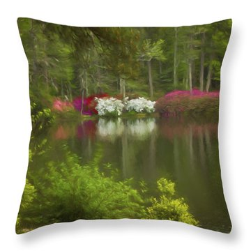 Spring Daze Throw Pillow