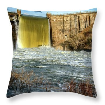 Throw Pillow featuring the photograph Spring Flow by Robert Bales