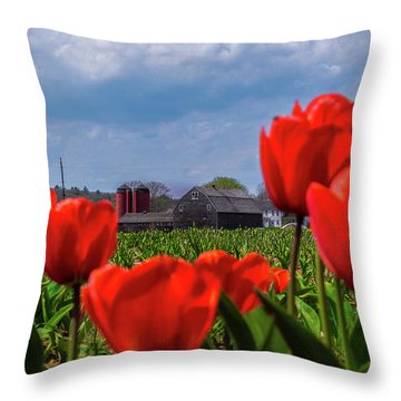Spring In Rhode Island Throw Pillow