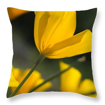 Spring Poppies Throw Pillow by Sue Cullumber