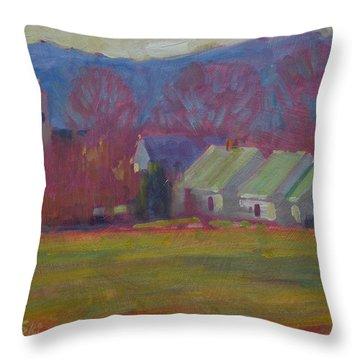 Spring Sunday Throw Pillow
