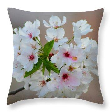 Springtime Bliss Throw Pillow