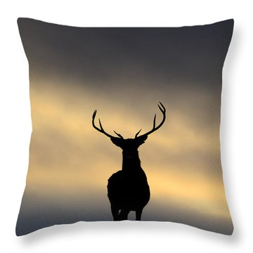 Stag Silhouette  Throw Pillow