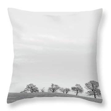 Throw Pillow featuring the photograph Standing Proudly by Jeremy Lavender Photography