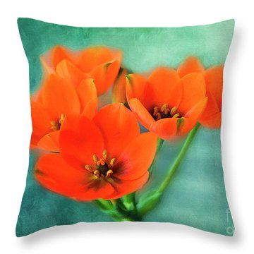 Throw Pillow featuring the photograph Star Of Bethlehem by Jutta Maria Pusl